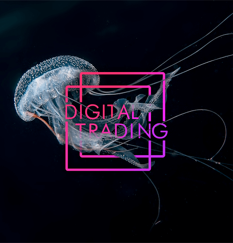 Jelly Fish logo for Digital Trading