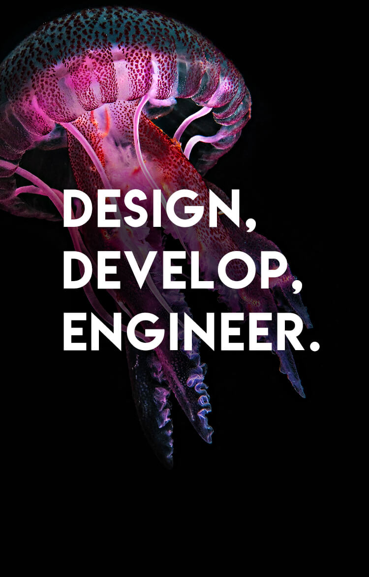 Design. Develop. Engineer.